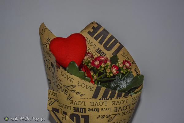 http://s25.flog.pl/media/foto_middle/12448346_dla-kobiet--.jpg